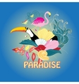 bird of paradise and plants vector image vector image