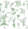 Garden flowers seamless pattern sketch vector image vector image