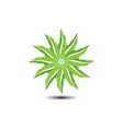 Green leaf shape star logo