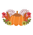 happy thanksgiving day pumpkin flowers foliage vector image vector image