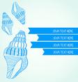SeaShell26 vector image vector image
