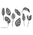 set hand drawn black and white vector image vector image
