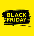 black friday text on paint splash vector image vector image