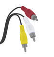 cable rca connector vector image