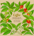 coffee branches frame on color background vector image