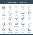 mammal icons vector image vector image