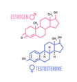sex hormones molecular formula vector image