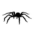 spider monster silhouette ancient mythology vector image