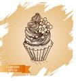 sketch cupcake vector image