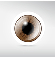 Abstract brown eye on grey background vector image
