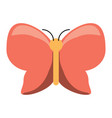 beautiful butterfly icon vector image