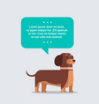 cute dog with chat bubble speech furry human vector image vector image