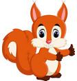 cute squirrel cartoon vector image vector image