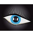 human eye vector image vector image