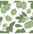 natural seamless pattern with hop flowers on white vector image