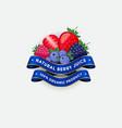 package design berry juice label vector image