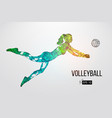 silhouette volleyball player vector image
