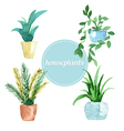 Watercolor set of house plants vector image vector image