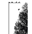 autumn tree and birds label pattern vector image vector image