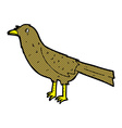 comic cartoon bird vector image vector image