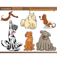 Dog breeds cartoon set vector image vector image