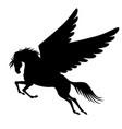pegasus winged horse silhouette vector image