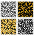 seamless leopard pattern set design animal brown vector image vector image