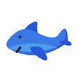 stuffed dolphin batoy cute object for kids vector image vector image