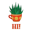 succulent plant in red tea cup on white vector image