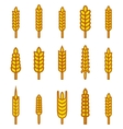 Ears of wheat bread symbols vector image