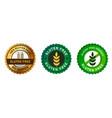 gluten free no wheat emblem sticker stamp symbol vector image vector image