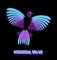 international bird day rainbow bird vector image vector image
