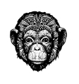Monkey Head doodle style vector image vector image