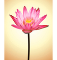 Oriental Flower Lotus Exotic Plant vector image