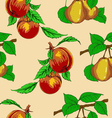 peaches and pears vector image vector image