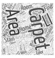 Right Carpet For Your Home Word Cloud Concept vector image vector image