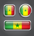 Senegal flag glass buttons vector image vector image