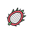 tropical dragon fruit pitahaya pitaya flat color vector image vector image