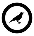 crow black icon in circle vector image