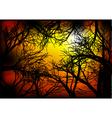 dark woods vector image vector image