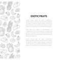 exotic fruits banner template with place for text vector image