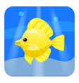 exotic tropical fish isolated on seae background vector image vector image