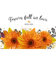 floral card design autumn bright orange gerbera vector image vector image