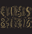 golden trees and florals branches on black vector image vector image