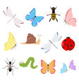 insects set on white background for graphic and vector image
