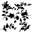 silhouette black flowers vector image vector image