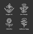 wild flowers chalk icons set douglas iris cow vector image vector image