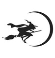 witch on broom icon simple style vector image