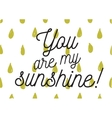 You are my sunshine inscription Greeting card vector image vector image