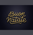 buon natale typography text christmas card vector image vector image